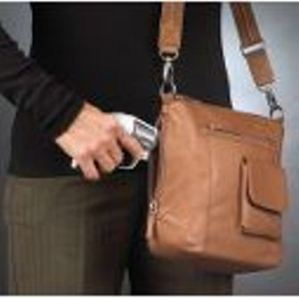 Purse with holster